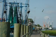 Shem Creek Docks_200.JPG